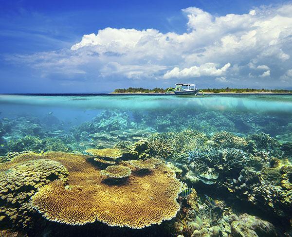 Les meilleurs spots de plongée d'Indonésie