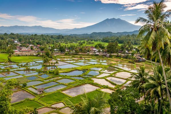 Sumatra, paradis naturel d'Indonésie